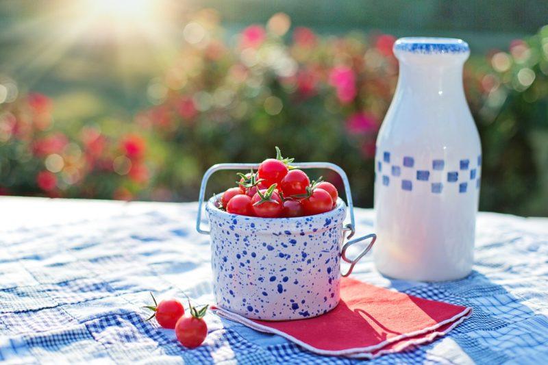 デトックス効果が期待できる自宅でできる腸内環境を整える方法